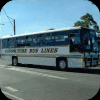Caboolture Bus Lines fleet images