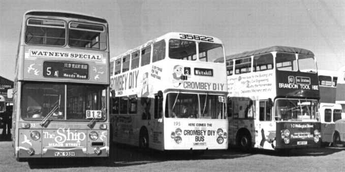 Advert buses at Thorpe Park